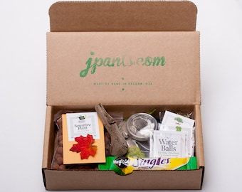 SALE Desktop Micro-Environment Terrarium Kit - You Provide The Vessel - NEW - Seeds, Instructions, Made by Hand in Oregon - Awesome!