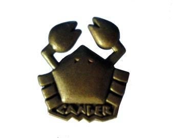 vintage CANCER zodiac sign metal pin badge horoscope astrology Horoscopo