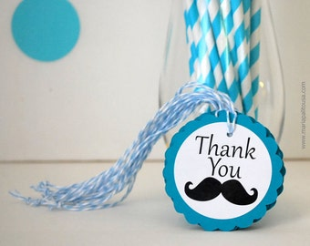 12 Mustache tags, handmade Favor Tags, Thank you tags, Party Favor tags, Little Man party, Mustache Gift Tag, twine on the side, A1130