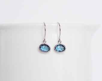 Brynn Earrings - Silver/Navy