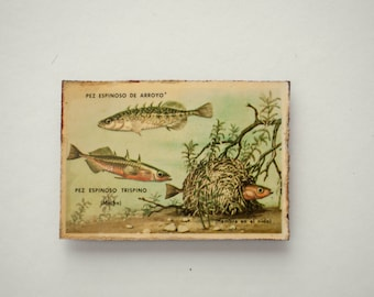 Fridge Magnet Refrigerator Rustic Handmade Wood Decoupage  Fish Fishing Nautical Ocean Picture Decor Gift for Him
