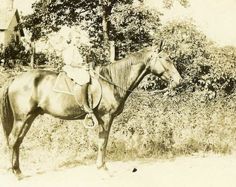 "Vintage Real Photo Postcard ""Birthday Horse"" Animal Old Antique RPPC Photo Black & White Photograph Found Paper Ephemera Collectible - 15"