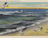 Seagulls on the Beach- 1940s Vintage Postcard- Coney Island, NY- New York- Scenic Souvenir- 40s Decor- Paper Ephemera- Unused