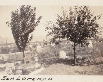 San Lorenzo Cemetery- 1920s Antique Photograph- Graveyard Photo- Headstones- Burial Grounds- Old Snapshot- Paper Ephemera