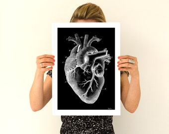 Summer Sale Human heart, black poster Anatomy Anatomical art prints, wall art poster  gifts for him , gifts for doctor SKA124WA3