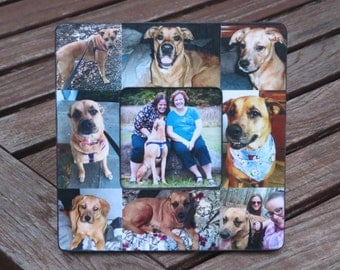 "Pet Collage Picture Frame, Personalized Pet Memorial Picture Frame, Family Dog Frame, Custom Cat Frame, Family Pet Picture Frame 8"" x 8"""