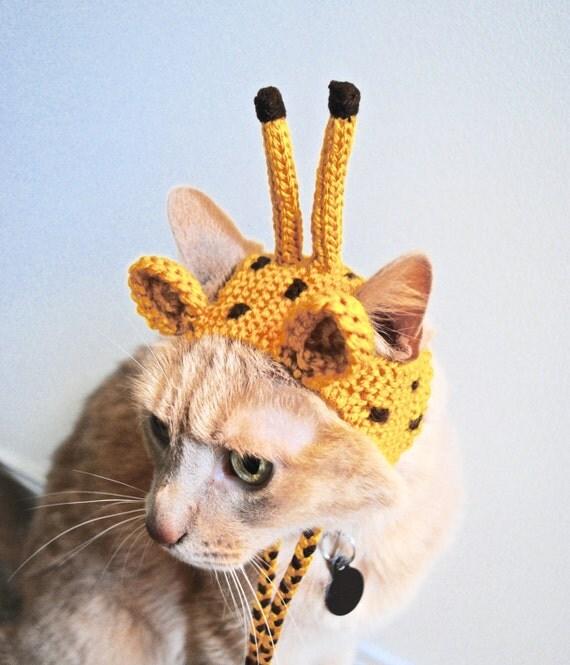 giraffe kost m f r katzen hand stricken katzen m tze cat. Black Bedroom Furniture Sets. Home Design Ideas