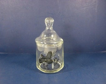 Vintage APOTHECARY JAR w/ Bobwhite Quail Glass Storage Bathroom Vanity