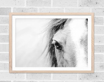 horse art horse wall art black and white horse photography horse print horse wall decor black and white prints fine art photography nature