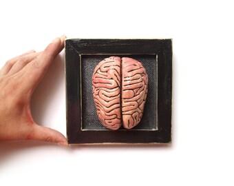 Brain sculpture, Ceramic brain sculpture, Brain wall art, Psyhology gift, Psyholagy art, Creepy sculpture, Anatomical sculpture, Human brain