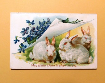 Vintage Embossed Bunny Rabbits & Violets Easter Postcard - 1910's - from DustyMillerAntiques