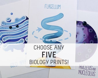 Choose Any 5 Biology Prints