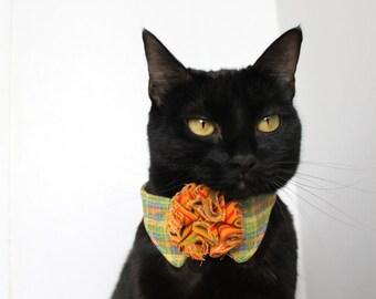 Orange Collar for Cat Accessory