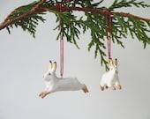 Arctic Hares - set of 4