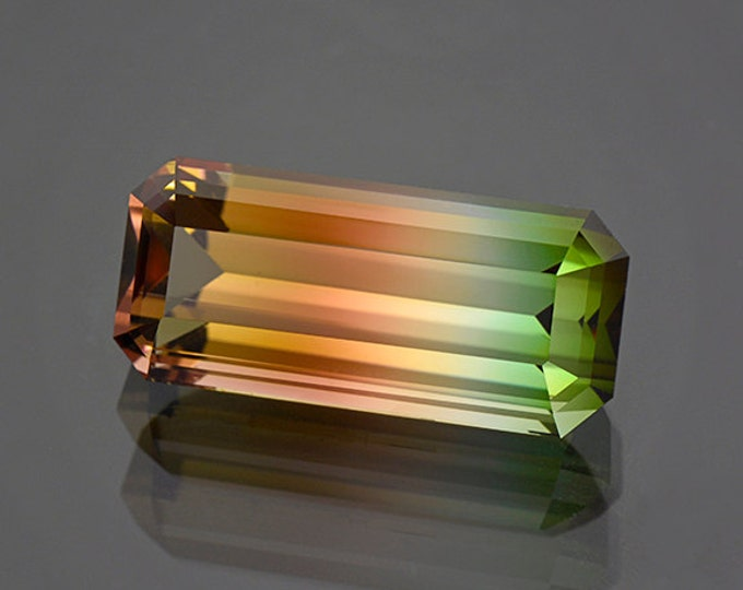 World Class Multicolor Tourmaline Gemstone from Mozambique 25.85 cts.