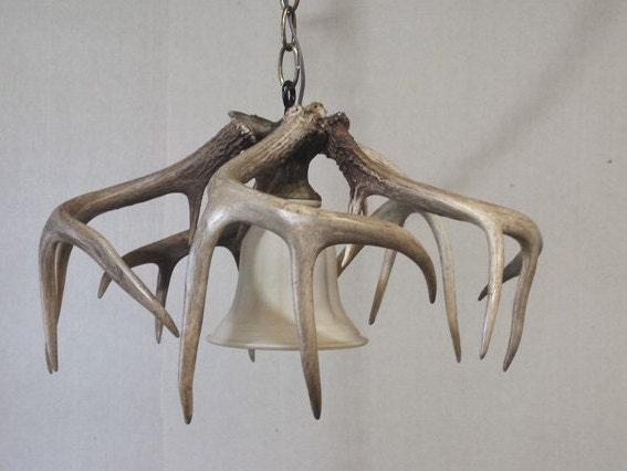 whitetail deer antler pendant light fixture 11 12 h x. Black Bedroom Furniture Sets. Home Design Ideas
