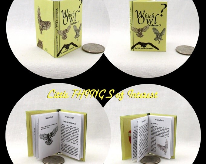 WHICH OWL? 1:6 Scale Readable Illustrated Miniature Book Harry Potter Barbie Accessory Bjd
