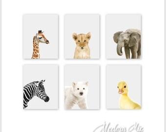 Baby Animal Prints Animal Nursery Art Prints Zoo Animals Jungle Nursery Decor Safari Nursery Art Baby Animal Prints Safari Nursery