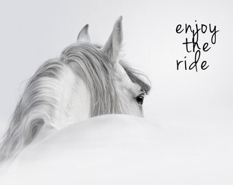 Horse Photography Enjoy The Ride White Horse Print White Horse Photo Horse Decor Black and White Horse Print Horse Art Inspirational Art