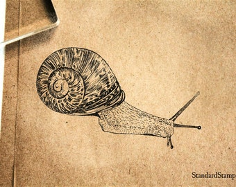 Gastropod Snail Rubber Stamp - 3 x 2 inches