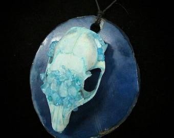 Bone & Stone: Blue Topaz Squirrel Skull on Agate