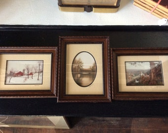 3Signed Barry Gamow Framed Nature Photos