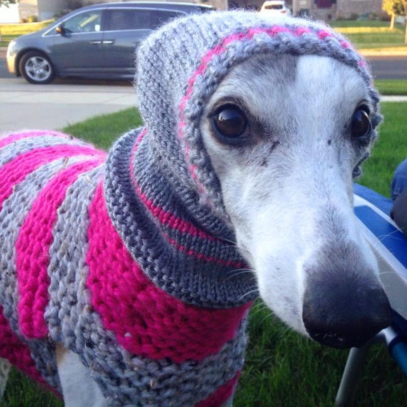 Knitting Pattern Dog Coat Pug : Dog sweater dog coat dog jumper greyhound sweater whippet