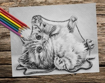 Coloring Pages, adult coloring pages, instant download, printable coloring page, cat coloring, coloring book for adults, adult coloring book
