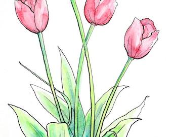 Original Tulips Watercolor Illustration