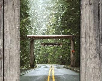 Mt. Rainier National Park - Park Entrance - Scenic Forest Scene - Mt. Rainier, WA - Fine Art Photography Print