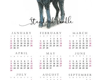 Standard Poodle 2017 yearly calendar