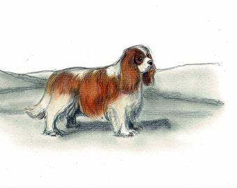 Cavalier King Charles Dog Art Vintage Style Print