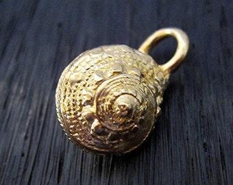 Gold Bronze Chambered Nautilus Shell Charm (one) (N)