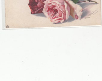 A/S C. Klein Pretty Blooming Pink And Roses Antique Postcard,Unused