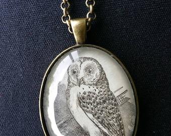 Vintage 1885 Webster's Dictionary Illustration Necklace: Owl.