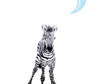 Baby Zebra Downloadable Print Blue