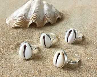 Small cowry ring - Adjustable ring with natural cowrie shell