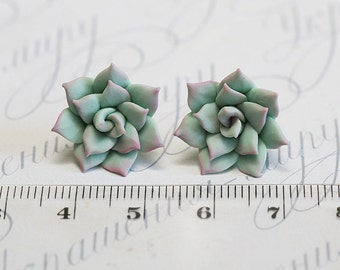 Mint Succulent Earrings. Gift. Polymer clay succulent Stud earrings. Polymer clay jewelry. Plant Earrings Post. Wedding Succulent Jewelry