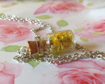 Beautiful 'Ray of Sunshine' Wildflower Bottle Necklace, Real Yellow Sunray Flowers in a Jar