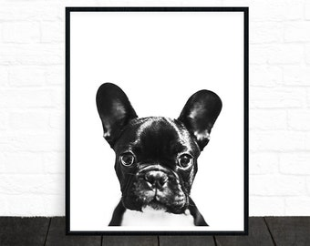 French Bulldog Print, French Bulldog Gifts, Dog Print, Pet Portrait, Black and White Animal Prints, Black and White Nursery, Printable Art