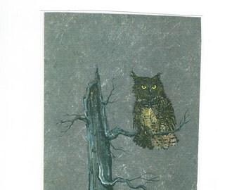 Great Horned Owl  5x7 wildlife print Jim Smeltz