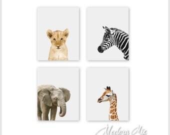 Baby Animal Prints - Safari Animal Prints Animal Nursery Decor Safari Nursery Art Prints Lion Zebra Elephant Giraffe Set of 4 Prints BAPG001