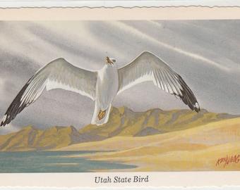 C1960s Artist Ken Haag Postcard Utah State Bird,Sea Gull