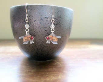 Drosophila Earrings - Hand Drawn Shrink Plastic and Sterling Silver