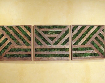6ft Reclaimed Wood Preserved Moss Triptych Art