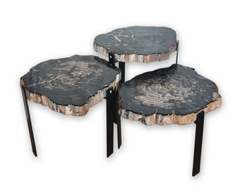 Petrified Wood Side Tables PF 1080
