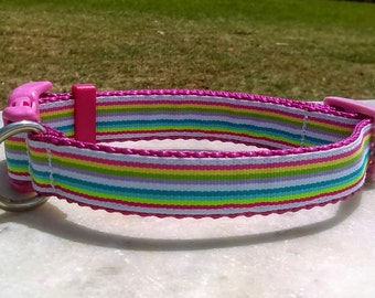 "Multi Color Candy Stripe 3/4"" Adjustable Dog Collar"