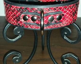 Red Snake Skin collar