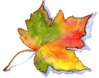 ORIGINAL Watercolor Painting,  Maple Leaf Still Life, 5x7 inch, Colorful Red, Yellow, Green leaf