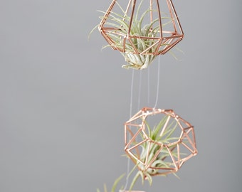 Copper Geometric Shape with Airplant